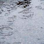 雨の日花粉症悪化!なぜひどくなるの?