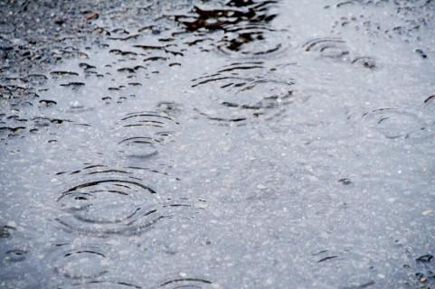 雨の日の花粉症