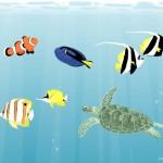 名古屋港水族館の料金!割引クーポンのおすすめはどれ?