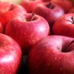 りんごの食べ過ぎは何か影響が出る?食べ過ぎの量はどれくらい?