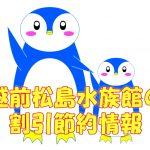 越前松島水族館の料金!割引クーポンのお勧めは?